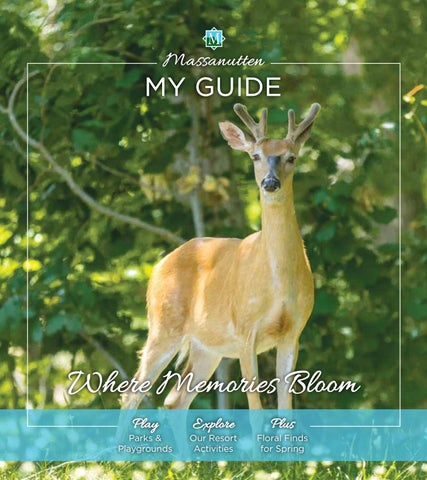 003a259aaa2 Massanutten Resort Spring My Guide 2018 by Massanutten Resort - issuu