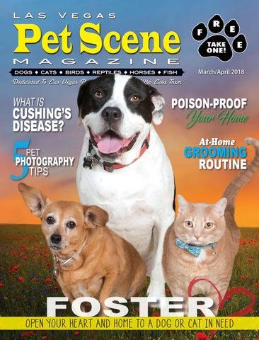 b642684f5f14b0 Las Vegas Pet Scene Magazine – March April 2018 by Homes Illustrated ...