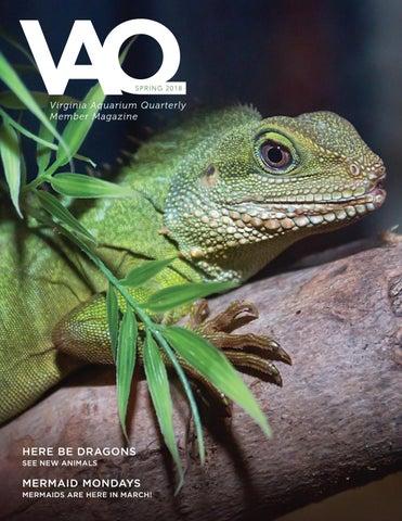 Spring 2018 VAQ by Virginia Aquarium - issuu