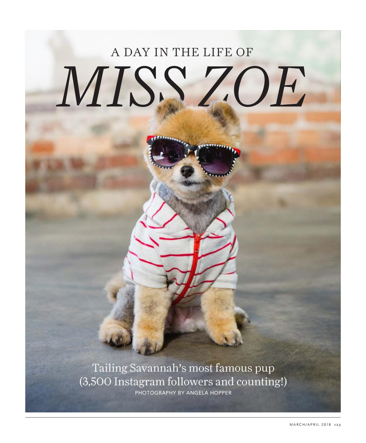 A Day in the Life of Miss Zoe + Meet the Vets 2018 by