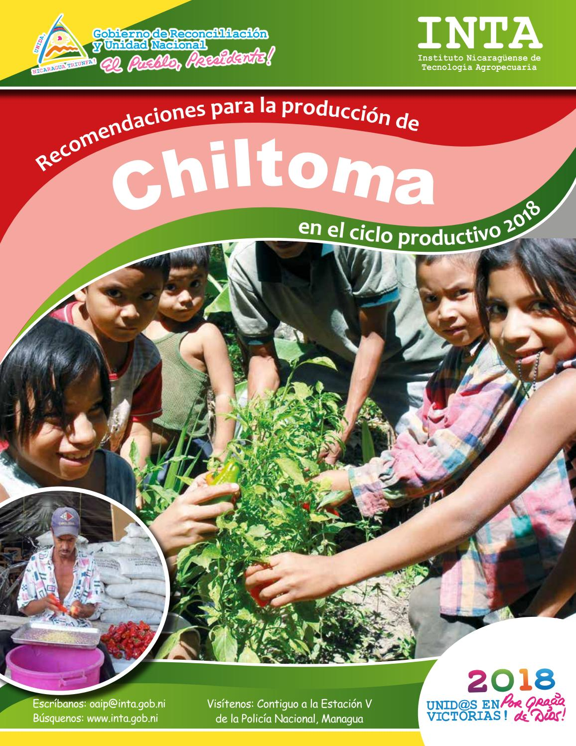 23+ Chiltoma Planta Wallpapers