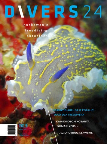 892888ad5a43f Magazyn Divers 24 nr 5 Marzec 2018 by Divers24 - issuu