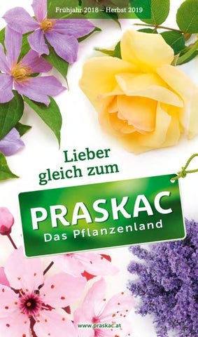 Katalog 2018   2019 By Praskac Pflanzenland   Issuu