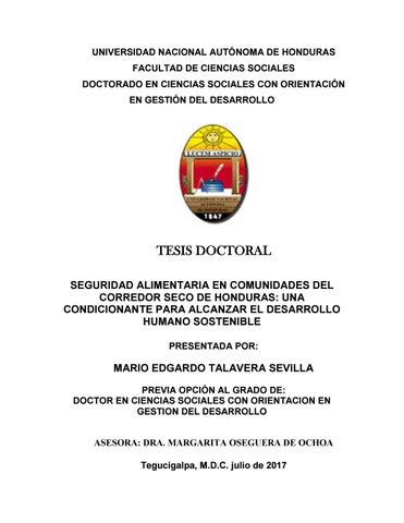 Component K2 Item 216 Premio Nacional A La Defensa De Los Derechos Humanos >> Tesis Mario Talavera By Doctorado Ccss Gd Issuu