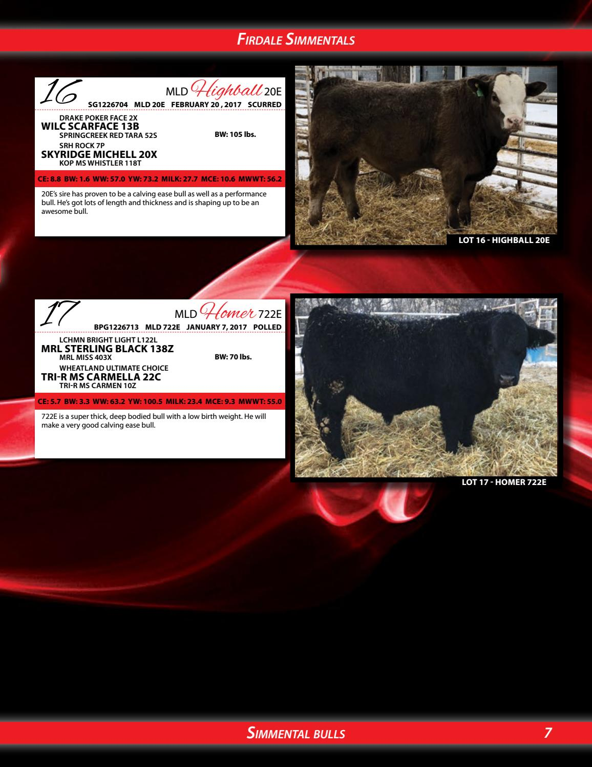 adc759cacdd Lundar s 50th Annual All Breed Beef Cattle Sale 2018 by Today s ...