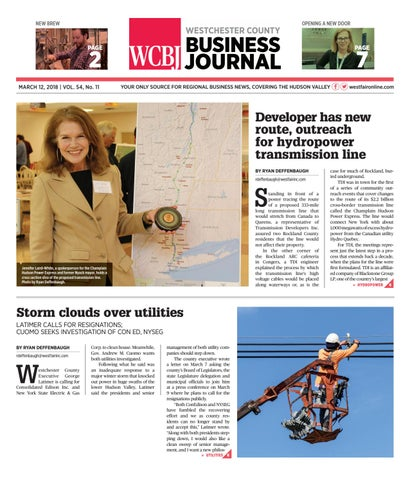 Westchester County Business Journal 031218 by Wag Magazine