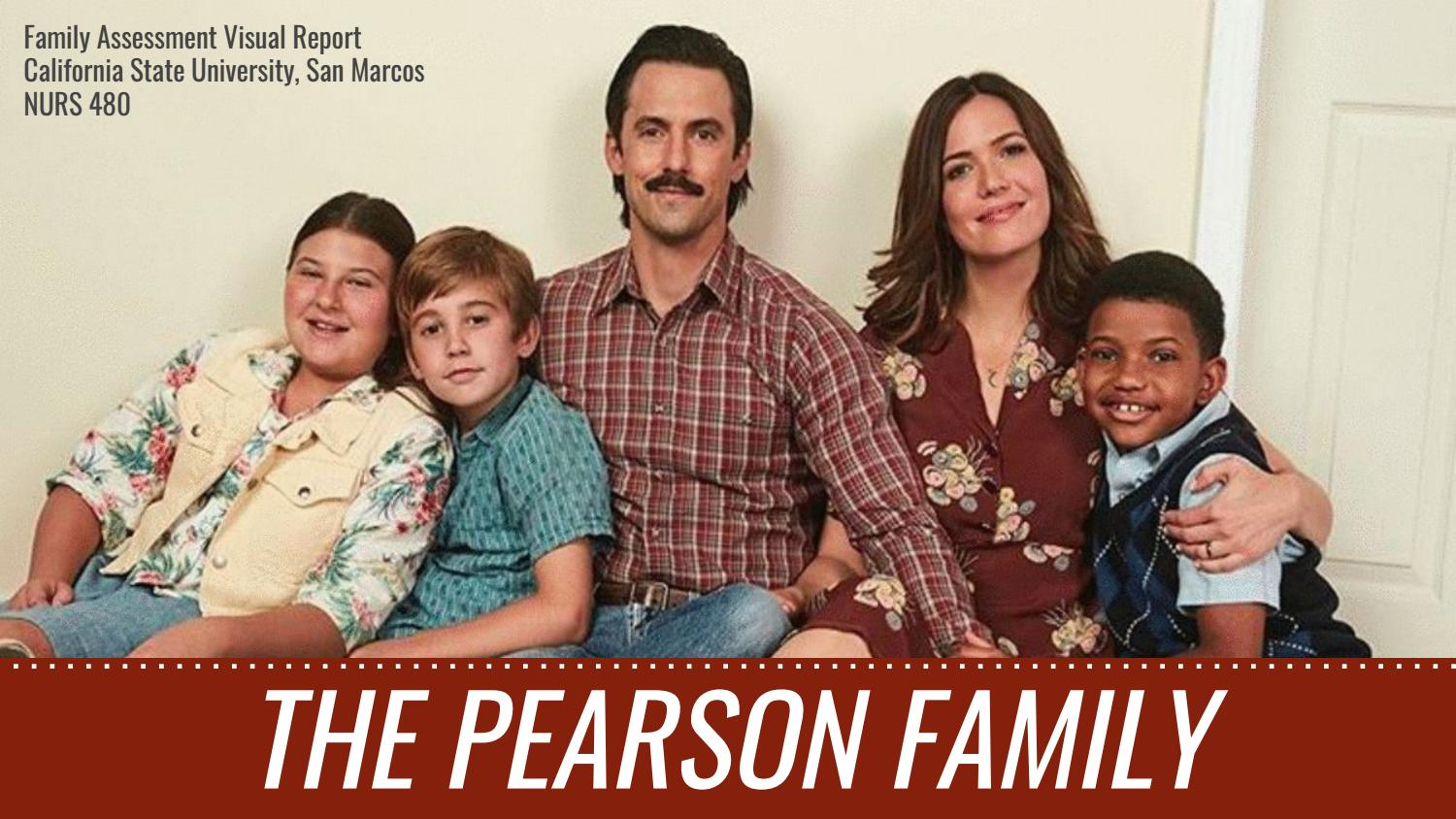 N480 Family Nursing Visual Report: Pearson Family by jdejes - issuu