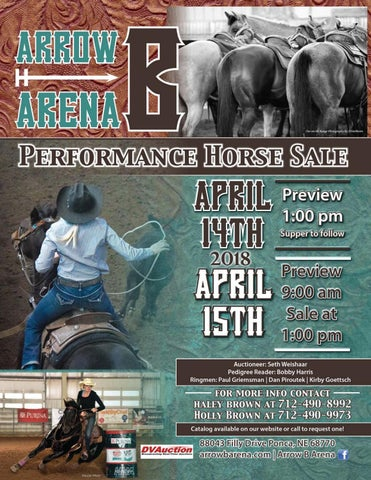 2018 Arrow B Arena Performance Horse Sale Catalog by