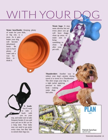 Page 13 of Traveling with your dog