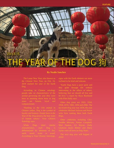 Page 15 of 2018 is the Year of the Dog