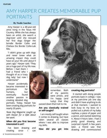 Page 8 of Amy Harper creates memorable pup portraits