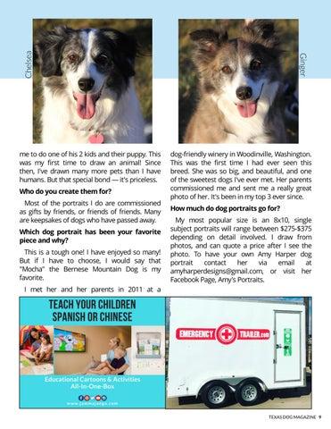 Page 9 of Amy Harper creates memorable pup portraits