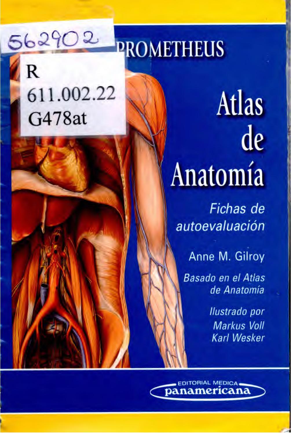 Atlas de anatomía de prometheus by Sistema de Bibliotecas ...