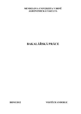 Zaverecna Prace By Prepelica Brahma Issuu