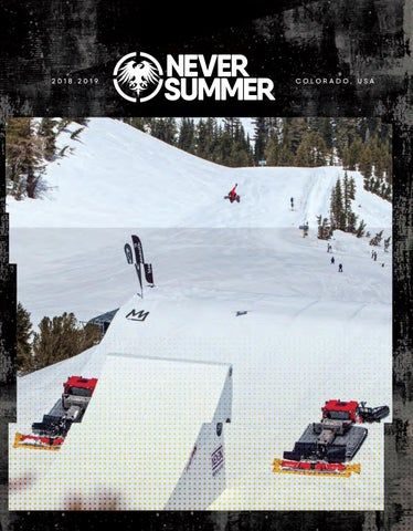 03f9a333557 NeverSummer Snowboards 18 19 by bane 4 - issuu