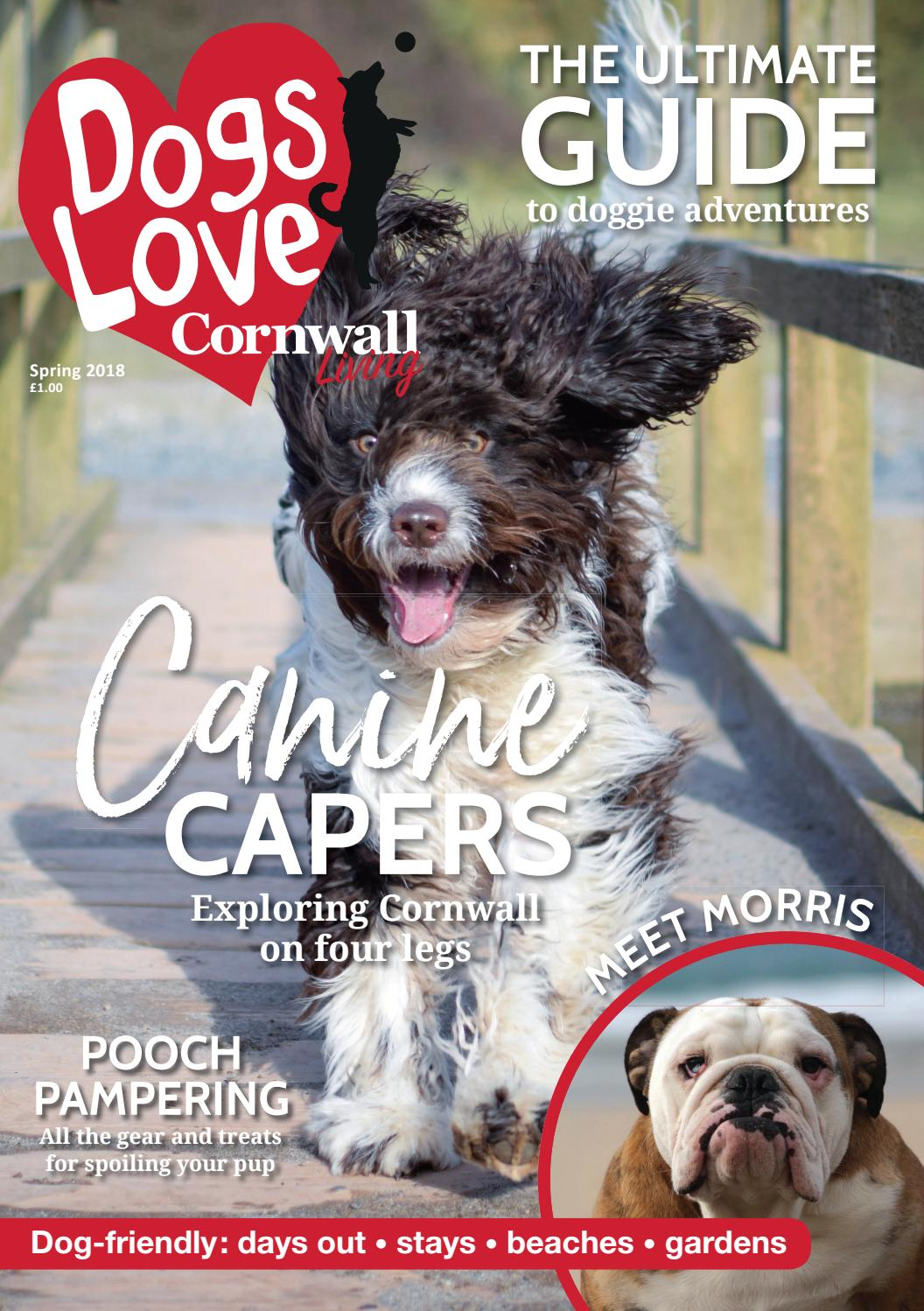 Dogs Love Cornwall Living Spring 2018 by Engine House Media
