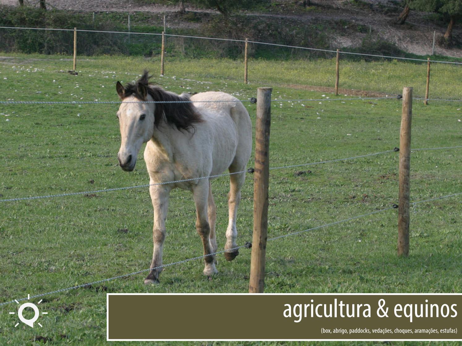 Equinos & Agricultura