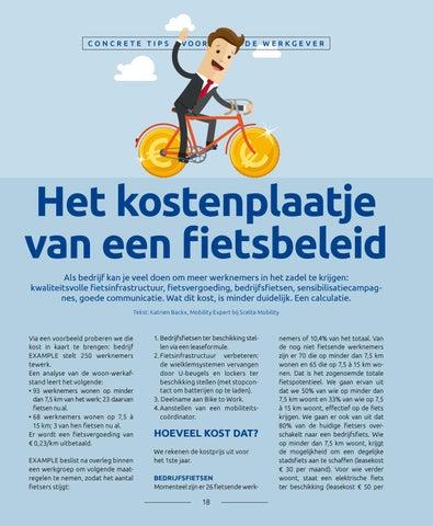 Page 18 of Het kostenplaatje van een fietsbeleid