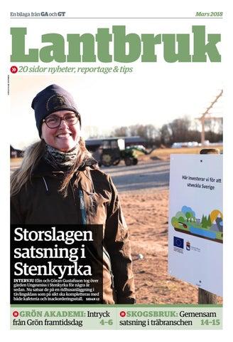 Stenkyrka Affren AB i Tingstde Info | Ratsit
