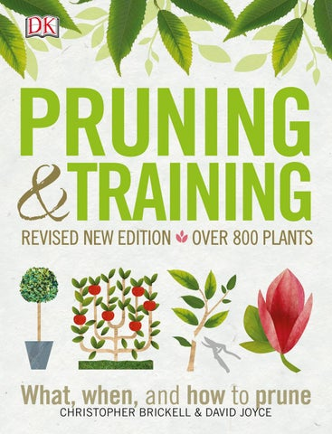 Pruning And Training Revised New Edition What By Agrihorti Issuu