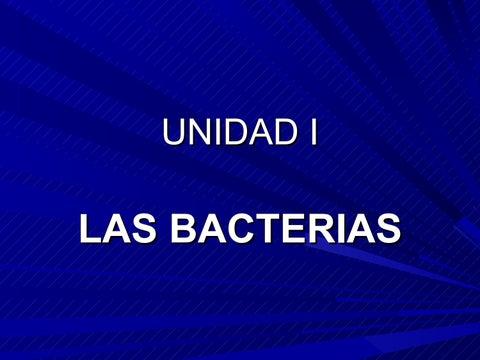 los parásitos bacterianos espirales heterotróficos son