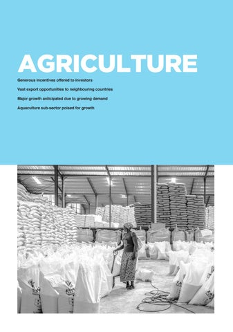 Page 141 of Zambia Agriculture