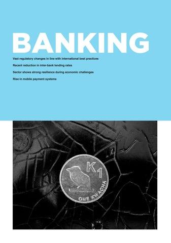 Page 51 of Zambia Banking