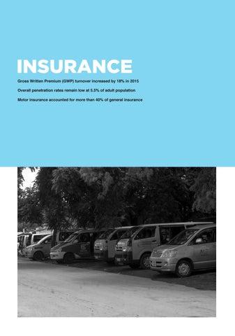 Page 89 of Zambia Insurance