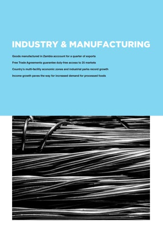 Page 95 of Zambia Industry & Manufacturing