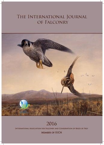The International Journal Of Falconry 2016 By Robert Zmuda Issuu