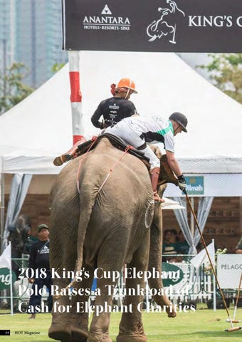 Page 64 of 2018 King's Cup Elephant Polo