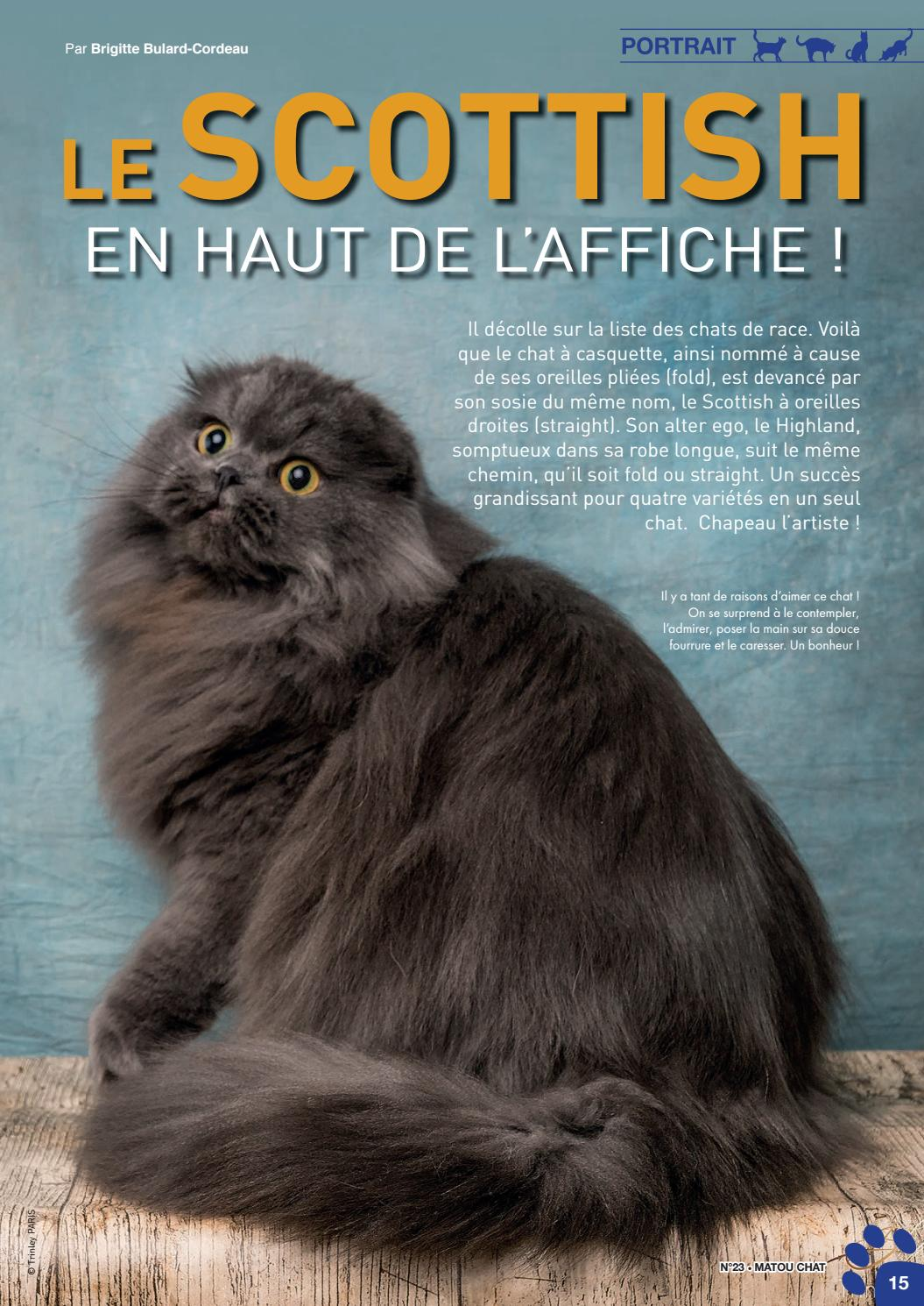 Chatte douce pics