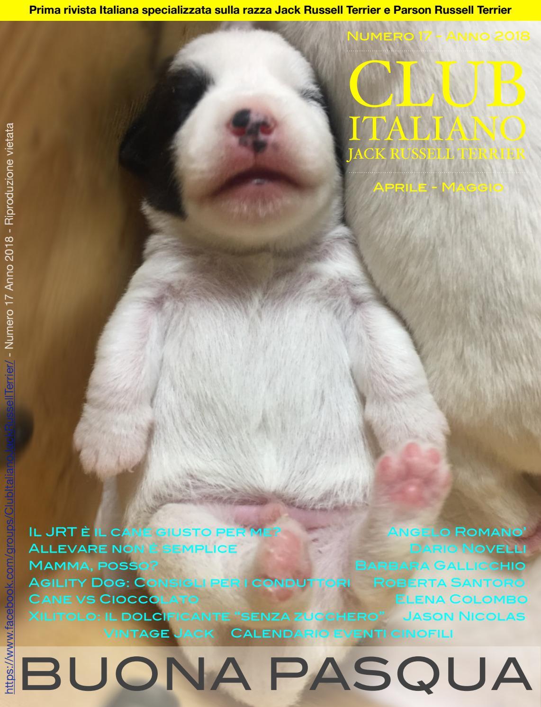 Club Italiano Jack Russell Terrier N17 2018 By Club Italiano
