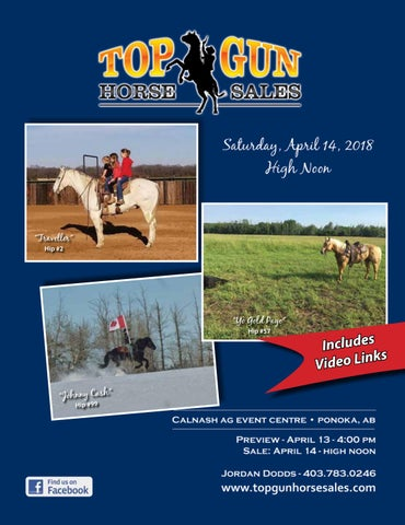 Top Gun Horse Sale 2018 by The Big Picture of Design Inc