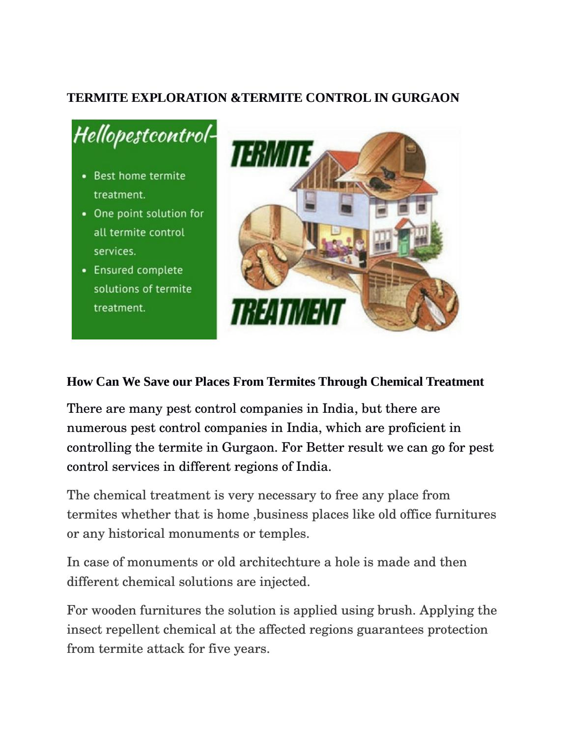 Pest Control Companies In India Termite Control In Gurgaon By Hellopestcontrol12 Issuu