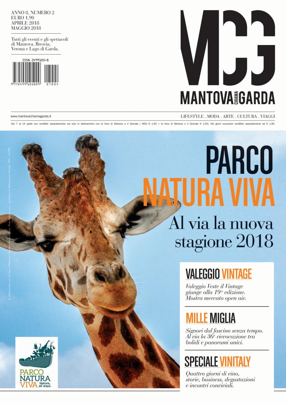 Allontanare Lucertole Dal Terrazzo mcg_02_2018 by mcg magazine - issuu