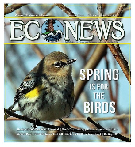Sandhill Cranes In Epic Oak Grove >> Econews Vol 48 No 2 Apr May 2018 By Econews Issuu