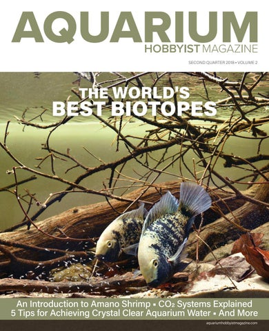 aquarium hobbyist magazine q4 2017 by harry tung issuu