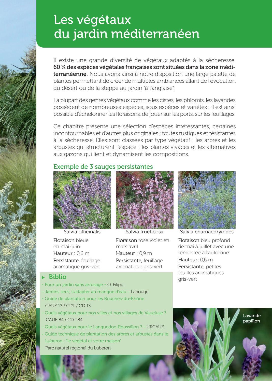 Plante Méditerranéenne Sans Arrosage mon jardin méditerranéen au naturel la pratique des méthodes