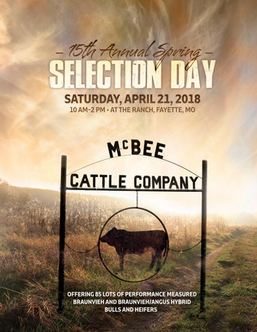 7ea731ff60aa3 McBee Cattle Co 2018 Selection Day by Monti West Design - issuu