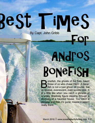 Page 37 of Andros Bonefish