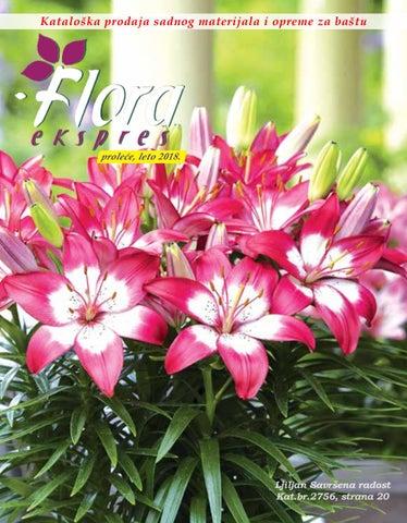 Flora Ekspers Katalog Cveća Proleće Leto 2018 By Catalog