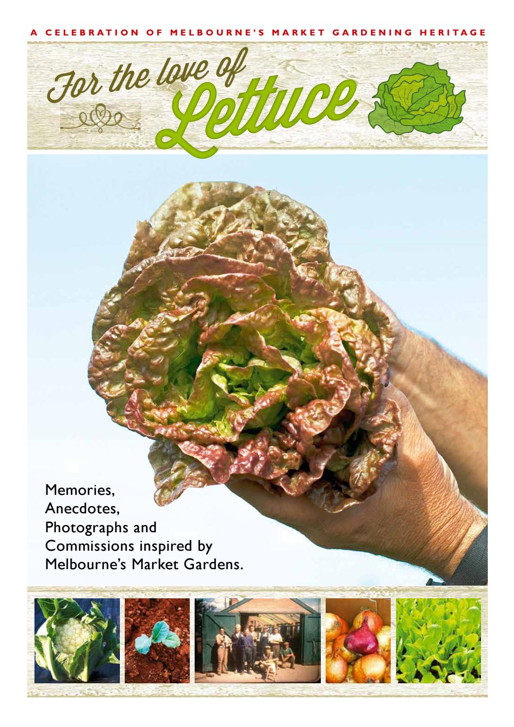 Love of lettuce by Village Voice - issuu