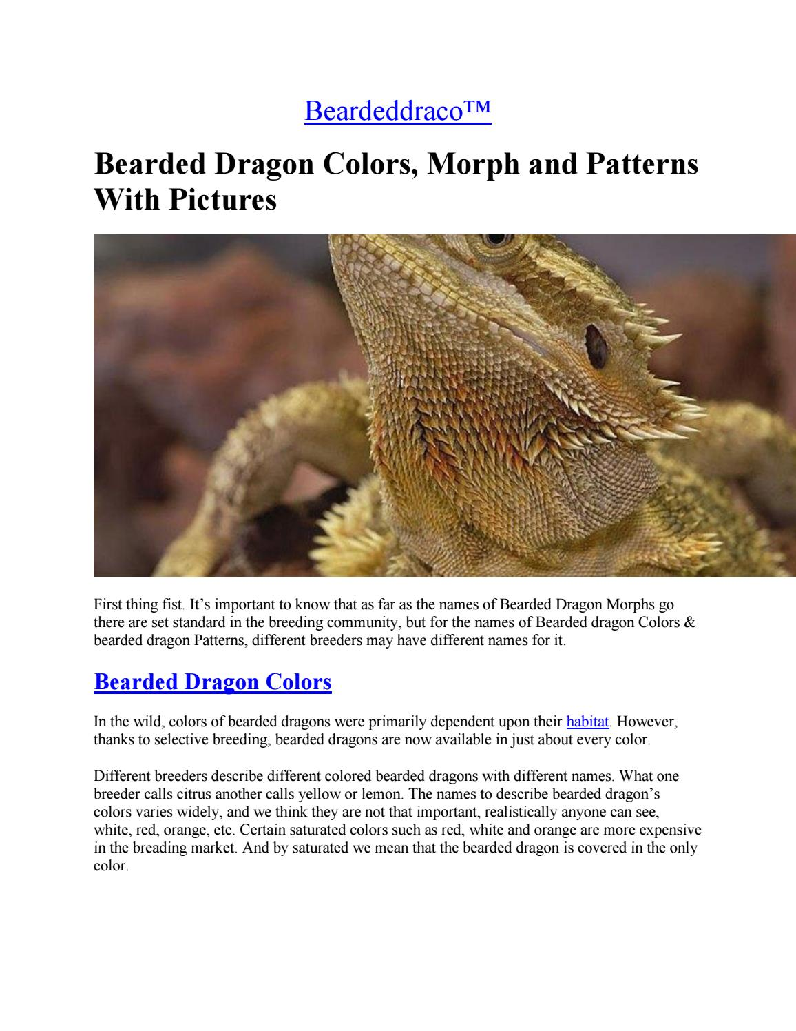 Bearded dragon changing colors yellow gold francis bacon the new organon analysis