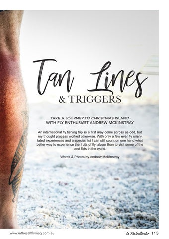 Page 113 of Tan Lines & Triggers