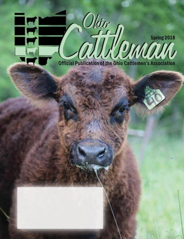 Ohio Cattleman Spring Issue 2018 By Ohio Cattlemens Association Issuu