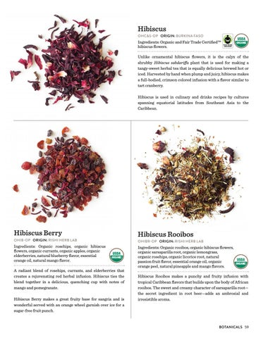 Rishi Tea Botanicals Lookbook By Rishi Tea Issuu