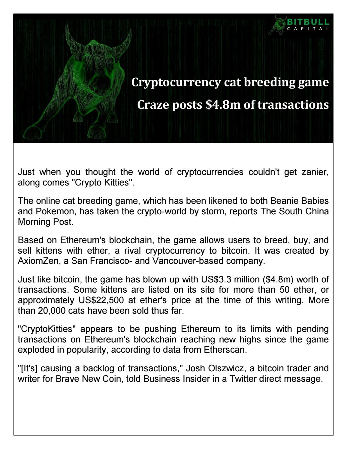 kitten coin cryptocurrency