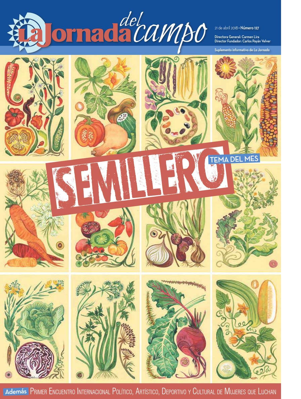 NO. 127 Semillero   01 by La Jornada del Campo - issuu a0c1a6b6c8f5