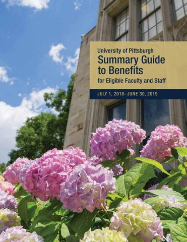 University Of Pittsburgh Summary Guide To Benefits 2018 2019